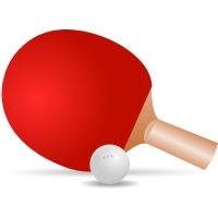Настольный теннис (1)