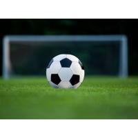 Футбол (3)